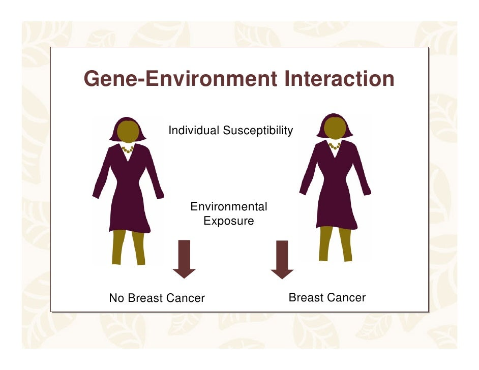 Breastcancer Genes Ppt