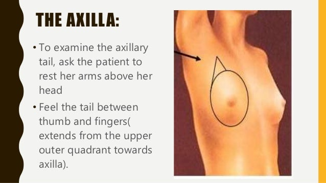 EXAMINATION OF AXILLA: • Stand on the patients right side. • Patients arm is raised and supported. • Take hold of right el...