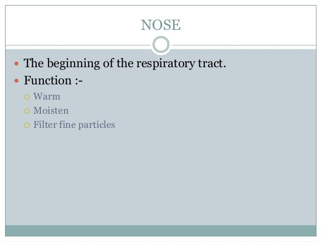 NOSE  The beginning of the respiratory tract.  Function :-  Warm  Moisten  Filter fine particles