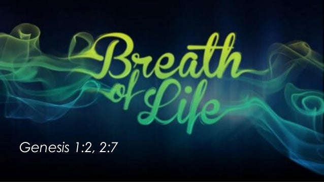 Image result for image life is a breath
