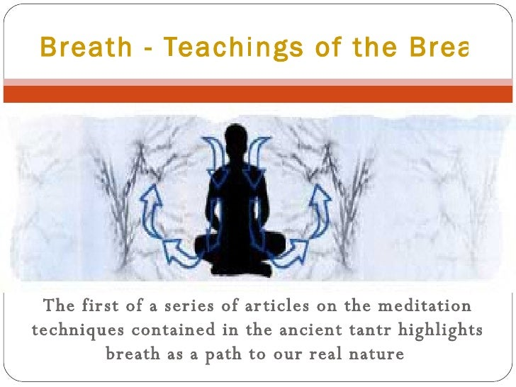 The first of a series of articles on the meditation techniques contained in the ancient tantr highlights breath as a path ...