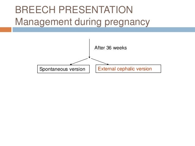 Breech presentation breech presentation management during pregnancy after 36 weeks spontaneous version external cephalic version 18 ccuart Choice Image