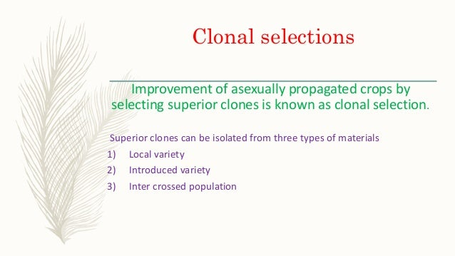 Selection methods in asexually propagated crops