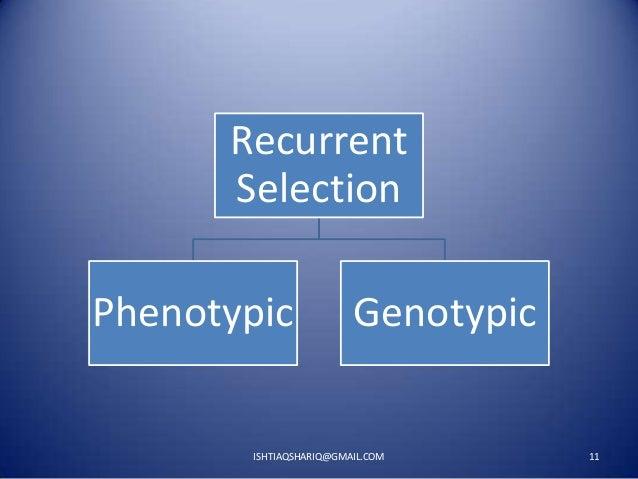 Recurrent Selection Phenotypic  Genotypic  ISHTIAQSHARIQ@GMAIL.COM  11