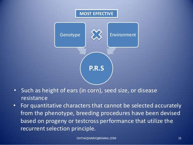 MOST EFFECTIVE  Genotype  Environment  P.R.S • Such as height of ears (in corn), seed size, or disease resistance • For qu...