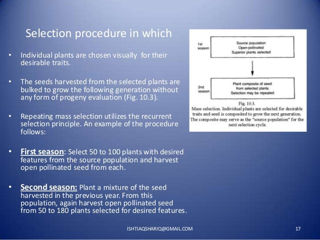 Selection procedure in which •  Individual plants are chosen visually for their desirable traits.  •  The seeds harvested ...