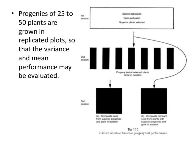 • Progenies of 25 to 50 plants are grown in replicated plots, so that the variance and mean performance may be evaluated. ...