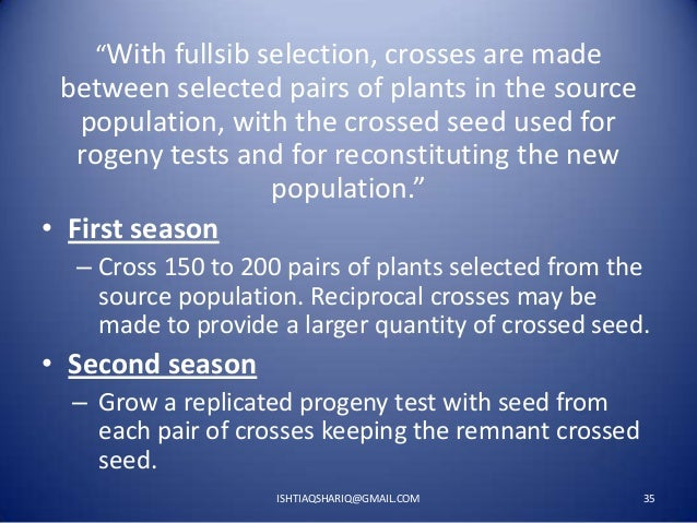 """""""With fullsib selection, crosses are made  between selected pairs of plants in the source population, with the crossed see..."""