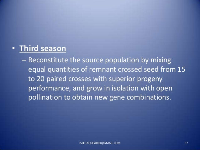 • Third season – Reconstitute the source population by mixing equal quantities of remnant crossed seed from 15 to 20 paire...
