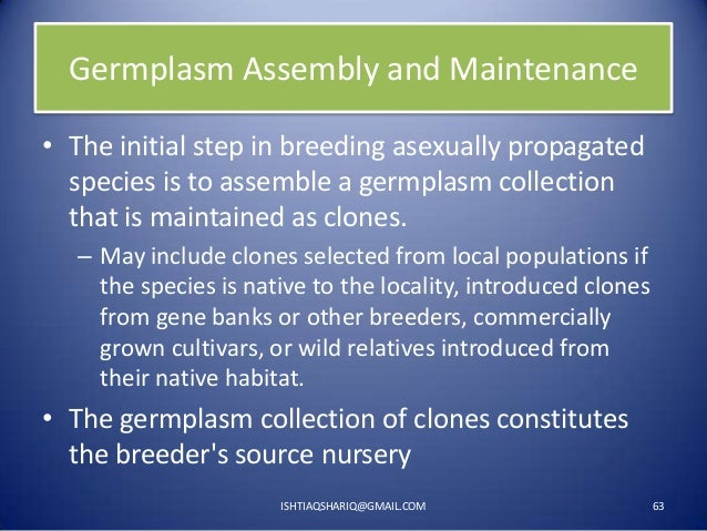 Germplasm Assembly and Maintenance • The initial step in breeding asexually propagated species is to assemble a germplasm ...