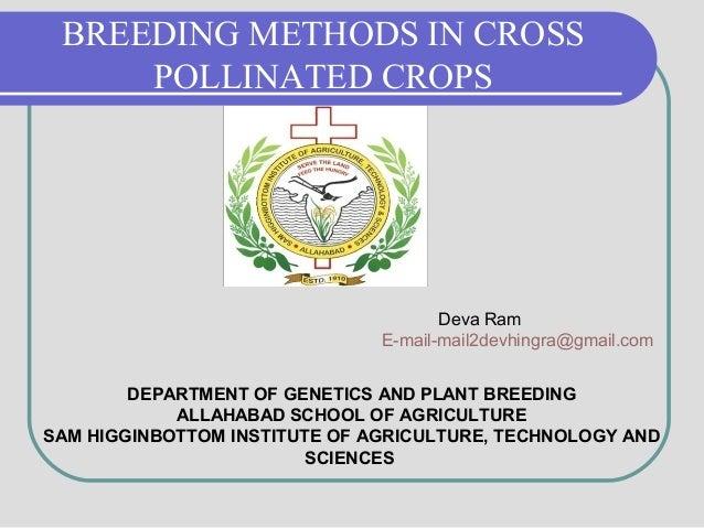 BREEDING METHODS IN CROSS POLLINATED CROPS Deva Ram E-mail-mail2devhingra@gmail.com DEPARTMENT OF GENETICS AND PLANT BREED...