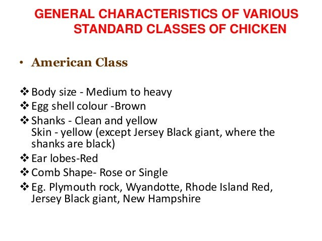 classification poultry breeds chicken turkey duck and