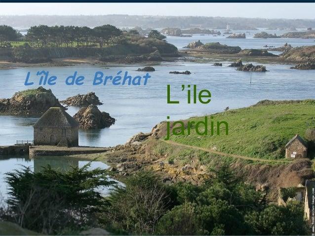 L'île de Bréhat                  L'ile                  jardin
