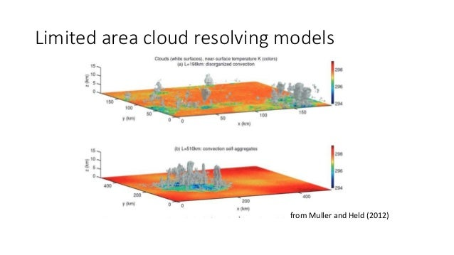 Limited area cloud resolving models from Muller and Held (2012)