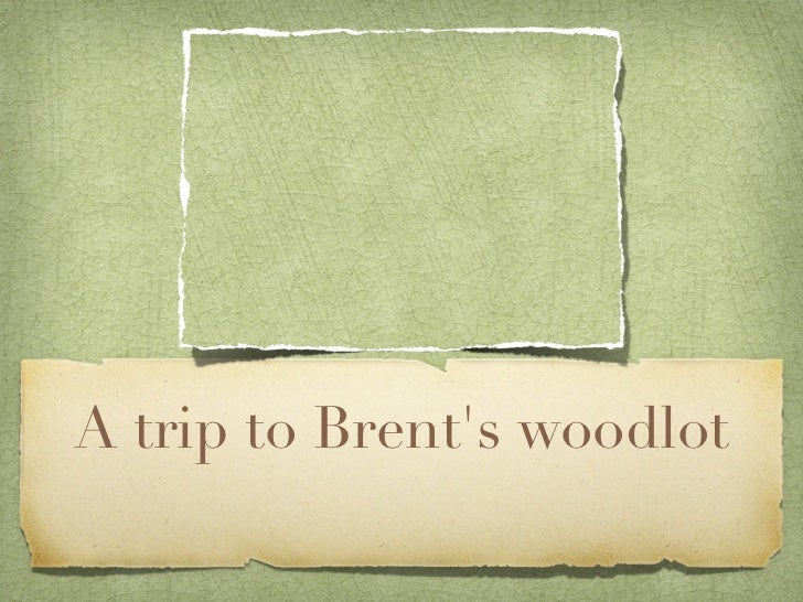 A trip to Brents woodlot