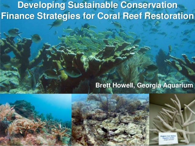Developing Sustainable ConservationFinance Strategies for Coral Reef Restoration                      Brett Howell, Georgi...