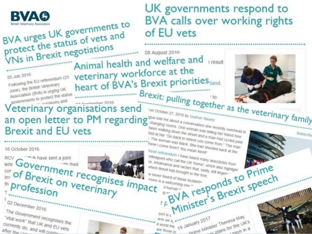 bva and rcvs brexit roundtable 24 february 2017