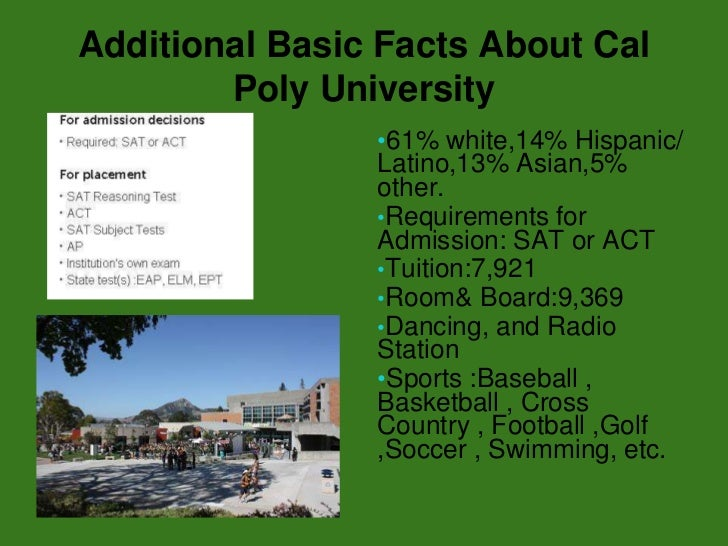 cal poly essay requirements According to cal poly admissions officers, getting into cal poly is up to  tool is  missing: cal poly has never required an essay for admission.