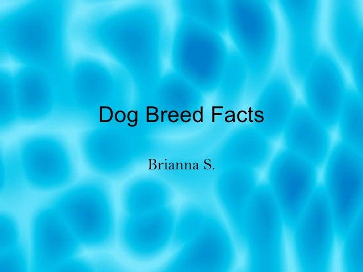 Dog Breed Facts Brianna S.