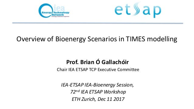 Overview of Bioenergy Scenarios in TIMES modelling Prof. Brian Ó Gallachóir Chair IEA ETSAP TCP Executive Committee IEA-ET...