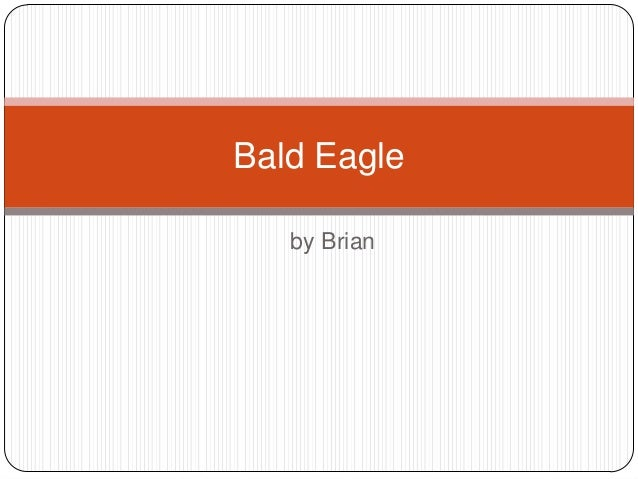 by Brian Bald Eagle