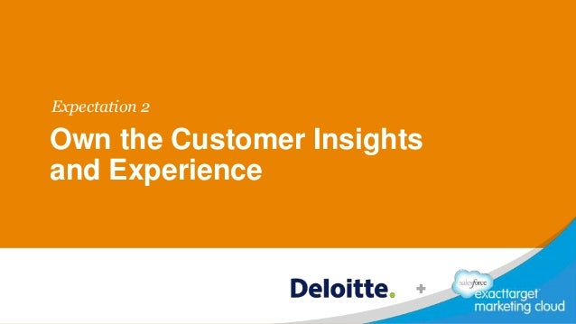Own the Customer Insights and Experience Expectation 2