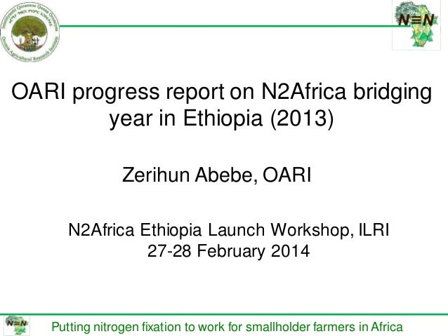በሀዋሳ ዩኒቨርሰቲ የም ጋር በመተ HAWASSA UN DIRECTOR OARI progress report on N2Africa bridging year in Ethiopia (2013) Putting nitrog...