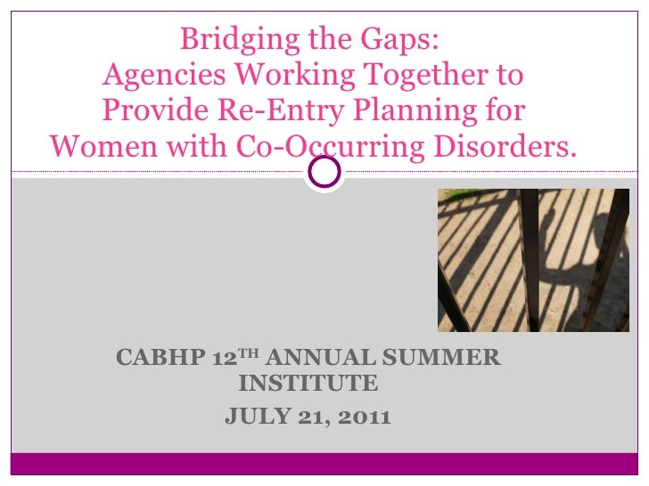CABHP 12 TH  ANNUAL SUMMER INSTITUTE JULY 21, 2011 Bridging the Gaps:  Agencies Working Together to Provide Re-Entry Plann...