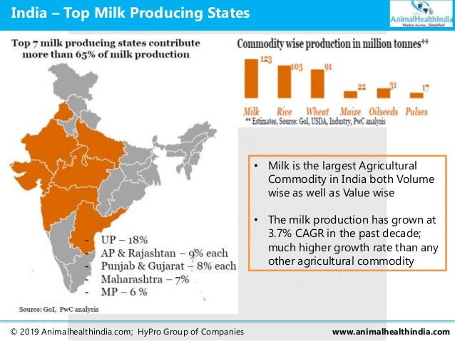 milk production in india essay Worldwide, the largest milk producer is india (more than 55% buffalo milk), the largest cow milk exporter is new zealand, and the largest importer is china the european union with its present 28 member countries produced 158,800,000 metric tons (156,300,000 long tons 175,000,000 short tons) in 2013 (968% cow milk), the most by any politico-economic union.