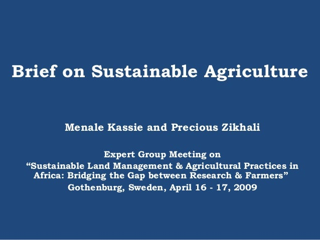 "Brief on Sustainable Agriculture Menale Kassie and Precious Zikhali Expert Group Meeting on ""Sustainable Land Management &..."