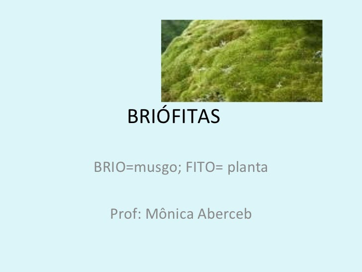 BRIÓFITASBRIO=musgo; FITO= planta  Prof: Mônica Aberceb