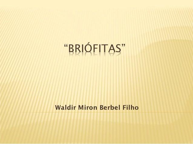 """BRIÓFITAS""Waldir Miron Berbel Filho"