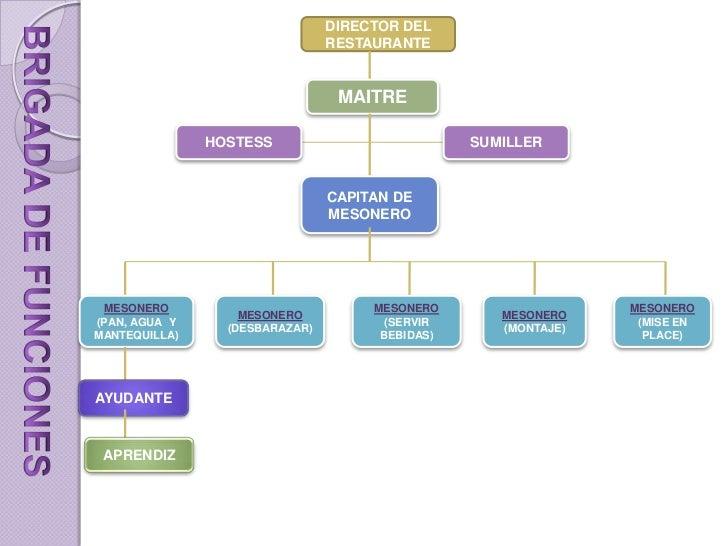 Brigada de servicio capitulo 1 for Estructura de una cocina de restaurante