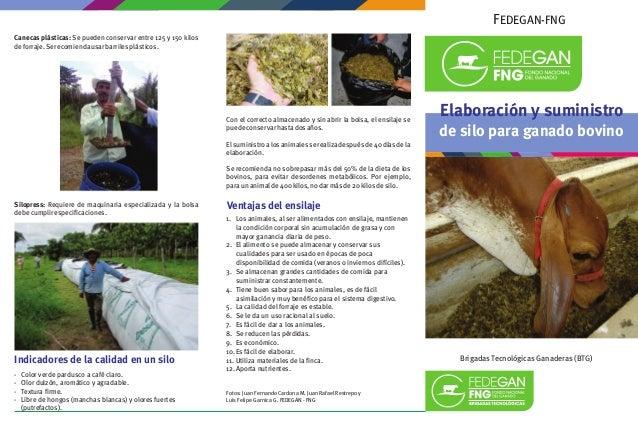 FEDEGAN-FNG Brigadas Tecnológicas Ganaderas (BTG) Elaboración y suministro de silo para ganado bovino Canecas plásticas: S...