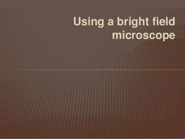 Using a bright fieldmicroscope