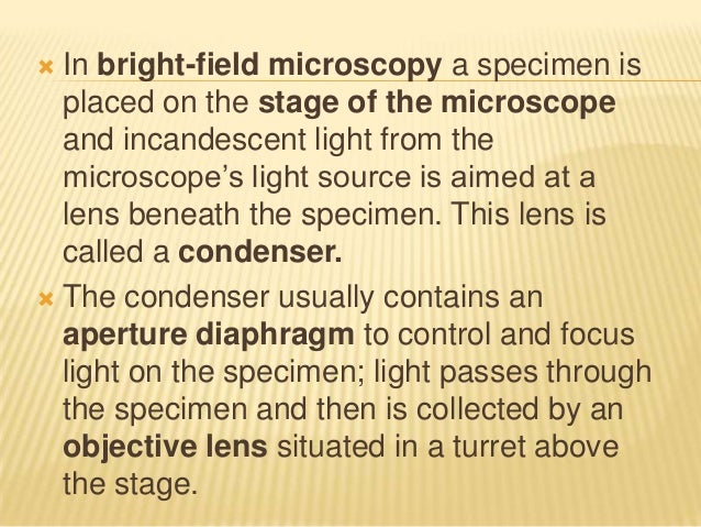  In bright-field microscopy a specimen isplaced on the stage of the microscopeand incandescent light from themicroscope's...