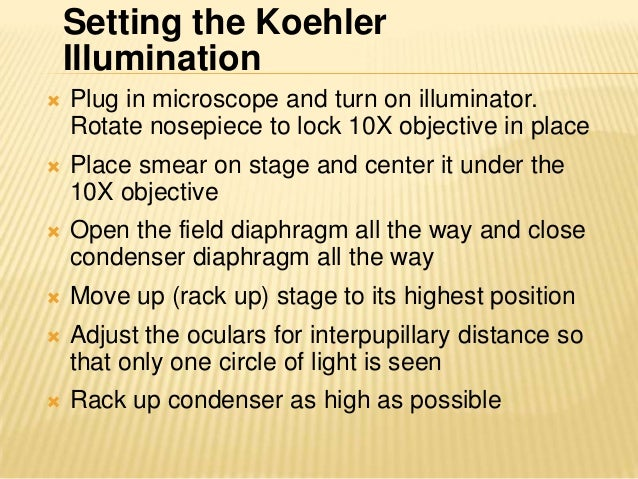 • Close field diaphragm half way and focus smear at10X• Close field diaphragm until diameter of illuminatedimage is smalle...