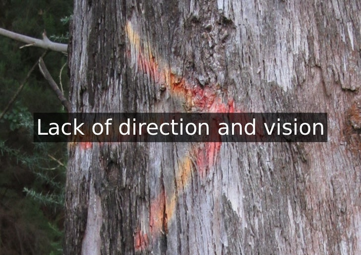 Lack of direction and vision