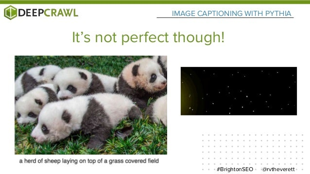 It's not perfect though! @rvtheverett#BrightonSEO IMAGE CAPTIONING WITH PYTHIA