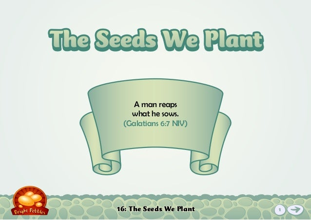 16: The Seeds We Plant A man reaps what he sows. (Galatians 6:7 NIV) The Seeds We PlantThe Seeds We Plant 1