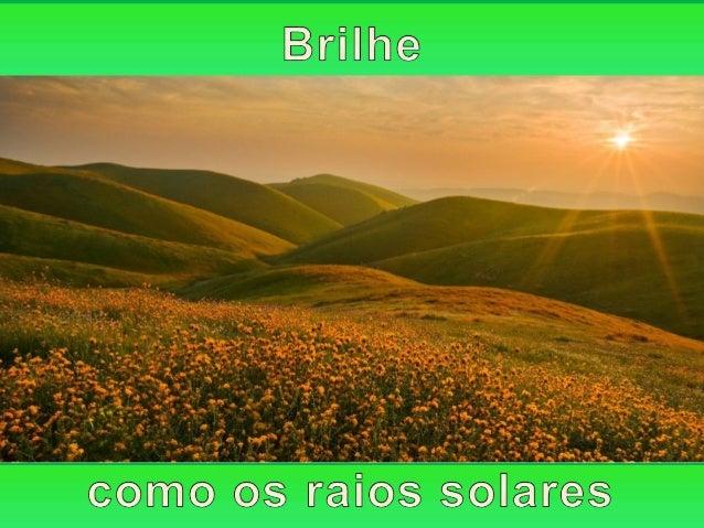 Da mesma modo que as plantas anseiam pelos raios solares, o homem anseia pela Luz Espiritual que emana do seu interior.