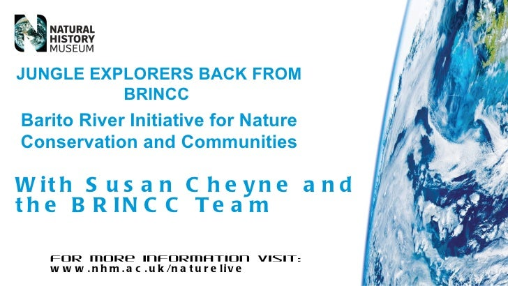 JUNGLE EXPLORERS BACK FROM          BRINCCBarito River Initiative for NatureConservation and CommunitiesW it h S u s a n C...