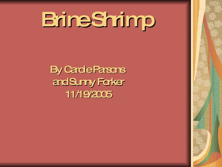 Brine Shrimp <ul><li>By Carole Parsons  </li></ul><ul><li>and Sunny Forker </li></ul><ul><li>11/19/2005 </li></ul>