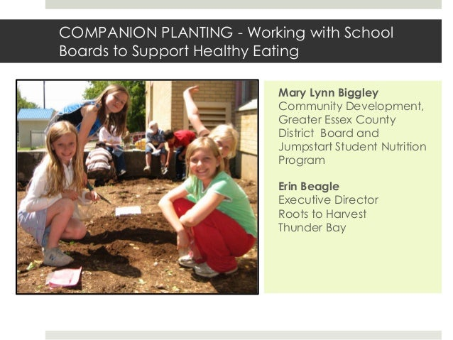 COMPANION PLANTING - Working with School Boards to Support Healthy Eating Mary Lynn Biggley Community Development, Greater...
