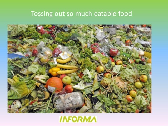The Composition Of The Food Waste In Toronto