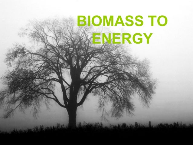 BIOMASS TO  ENERGY