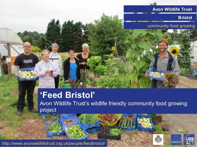 Avon Wildlife Trust Bristol community food growing Click on the icon below to insert a key image showing the  project/init...
