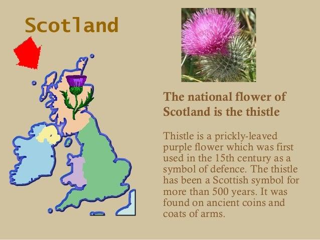 British symbols ccuart Choice Image