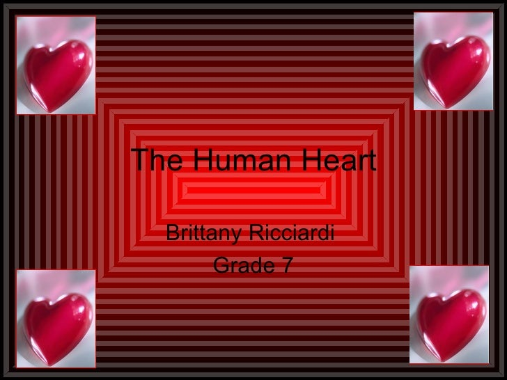 The Human Heart Brittany Ricciardi  Grade 7