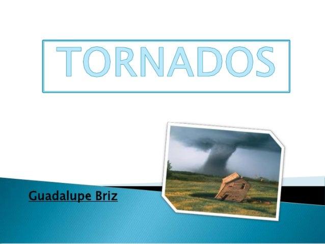 Tornados-Briz